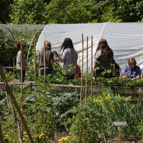 Horticultural Learning