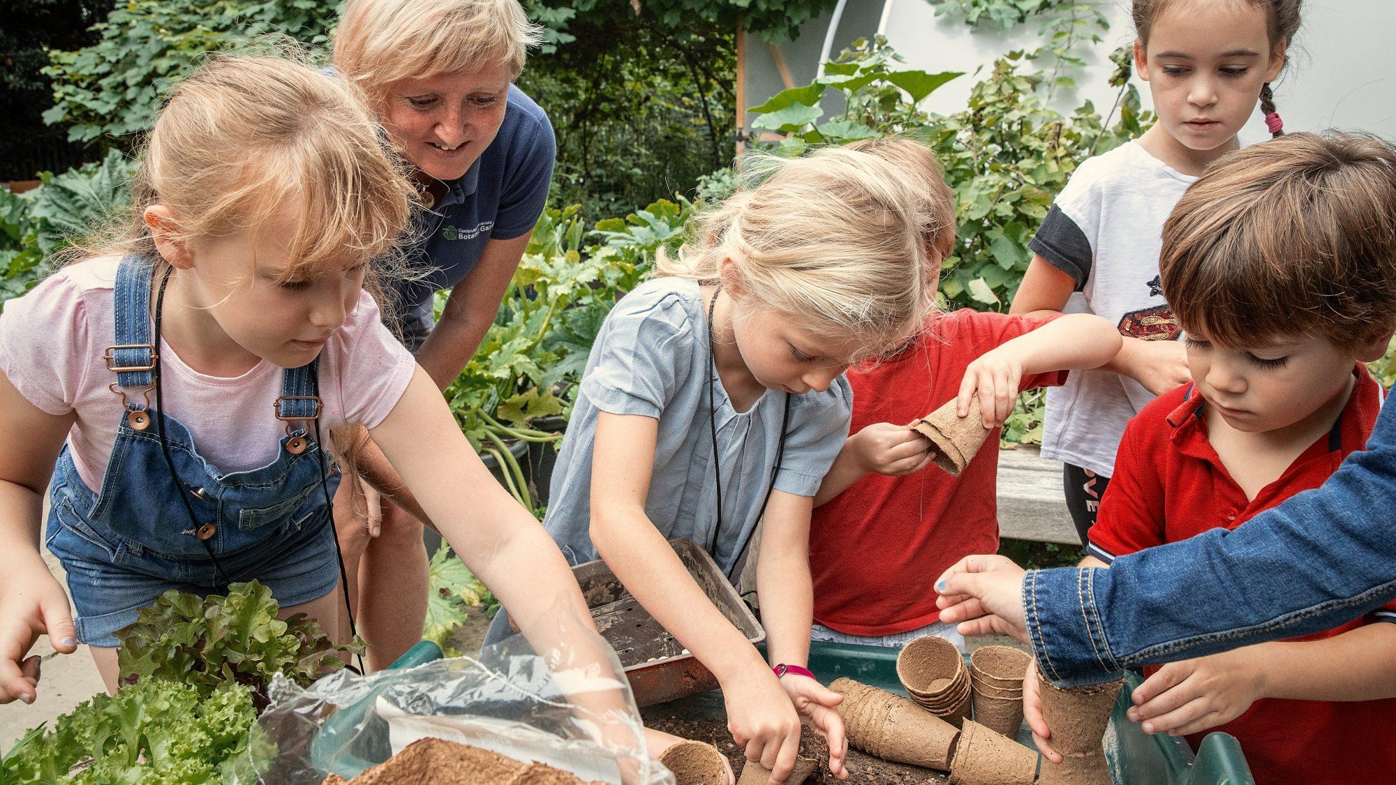 Children having fun in the Schools' Garden.