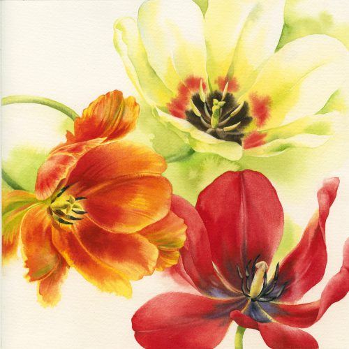 FULLY BOOKED Painting vibrant tulips in watercolour