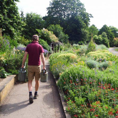 Learn to Garden Weekend