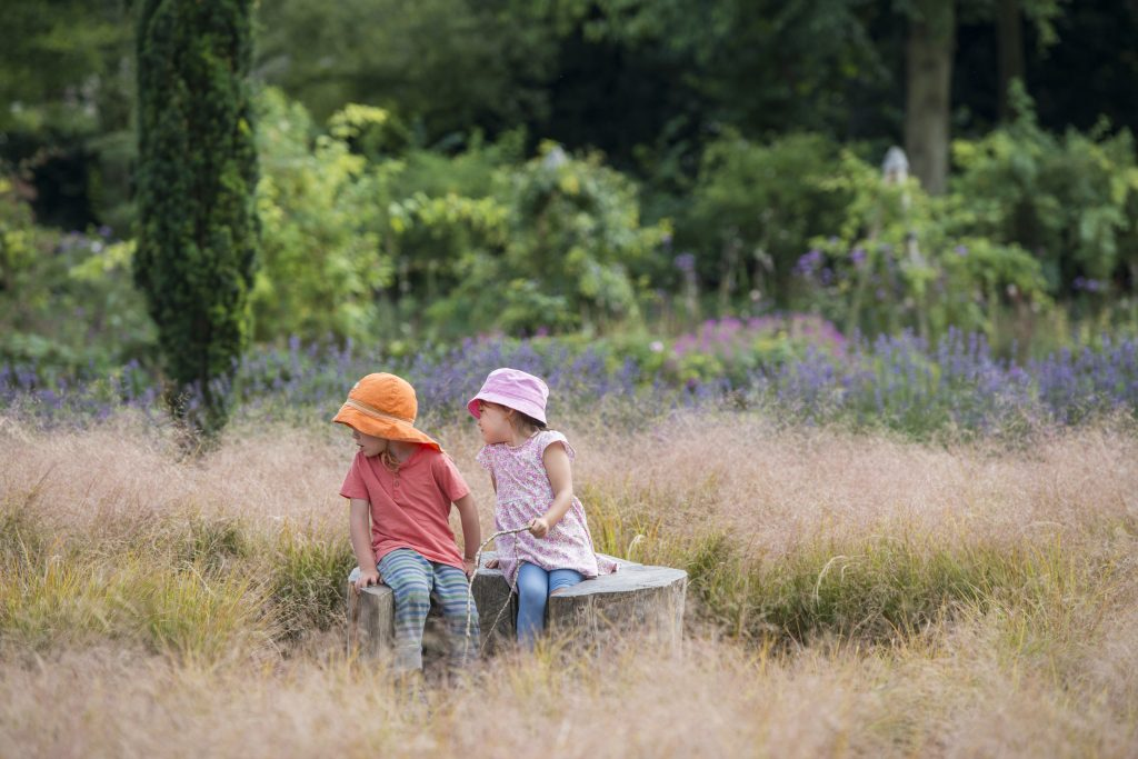 Two young children in the centre of the maze in summer.