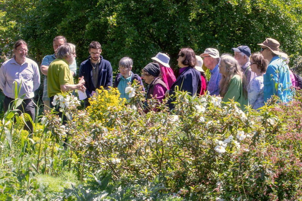 Tour of the garden.