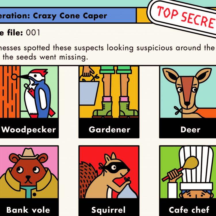 Self-Guided Family Trail: Crazy Cone Caper