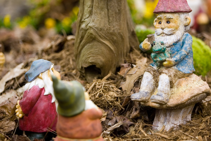 Image of three gnomes in the wood.  One gnome is sittling on a toadstool.