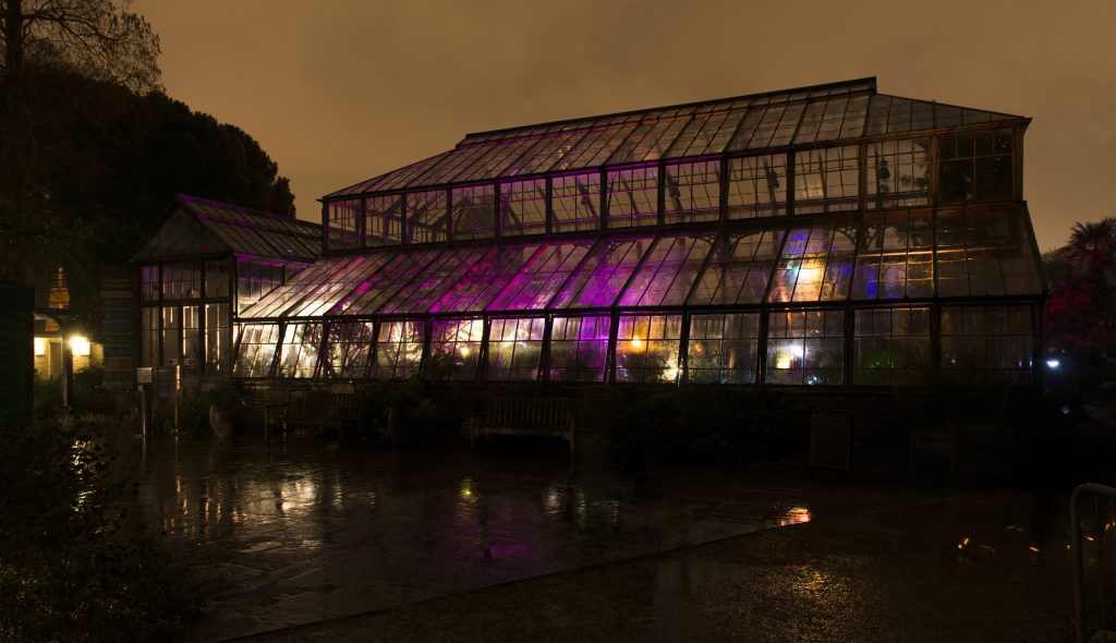 Twilight in the Glasshouse Range.