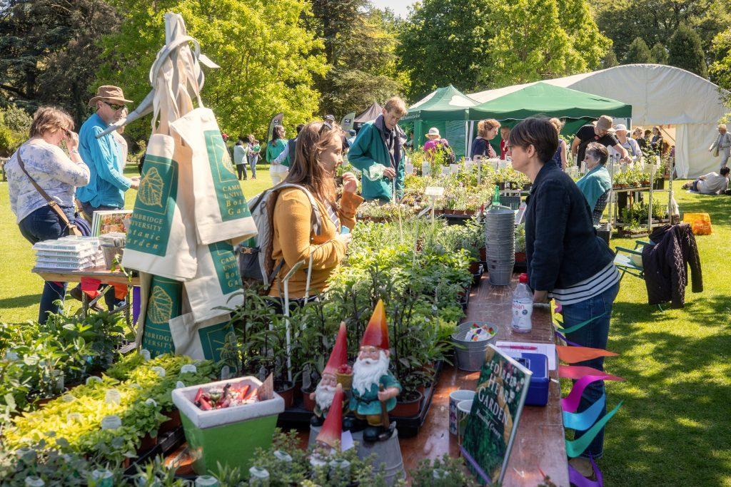 Specialist plants stalls