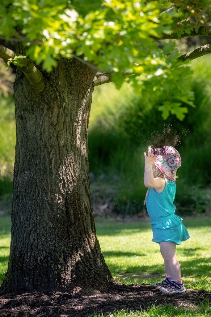 A young visitor admires a tree
