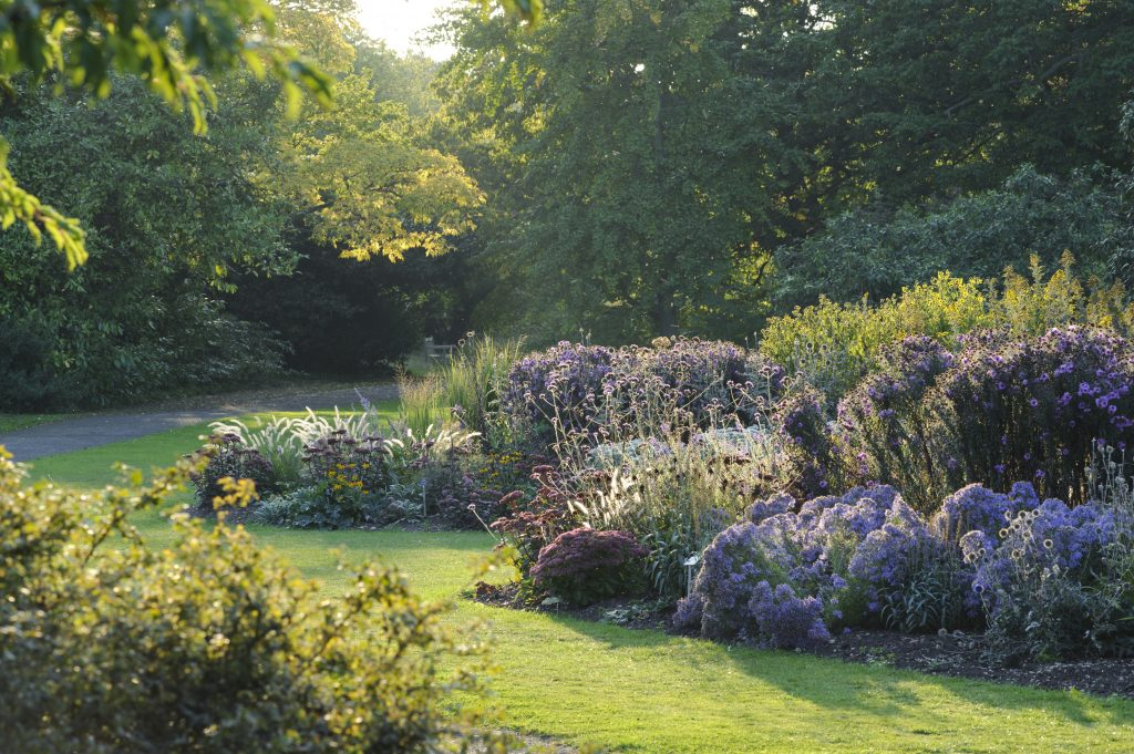 The Herbaceous Beds