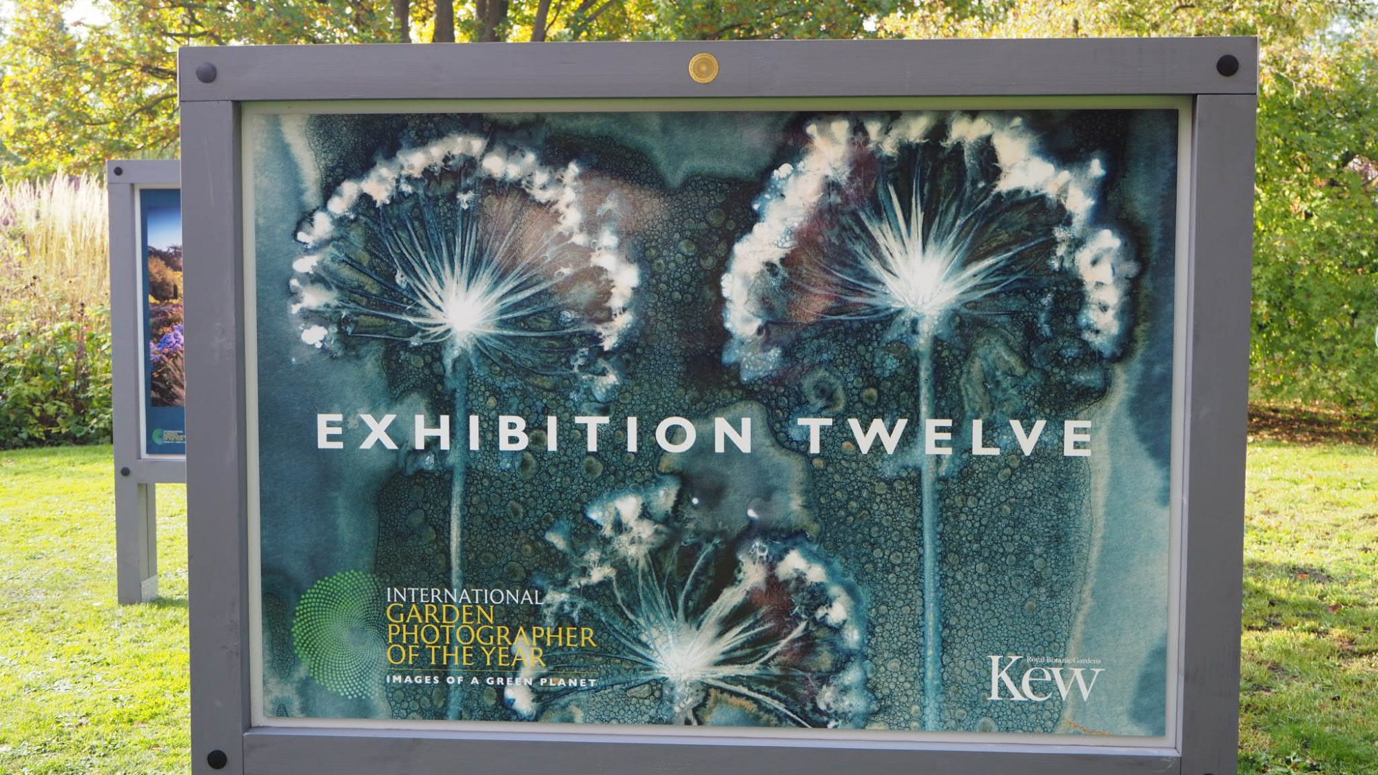 Exhibition Twelve exhibited in the Autumn Garden