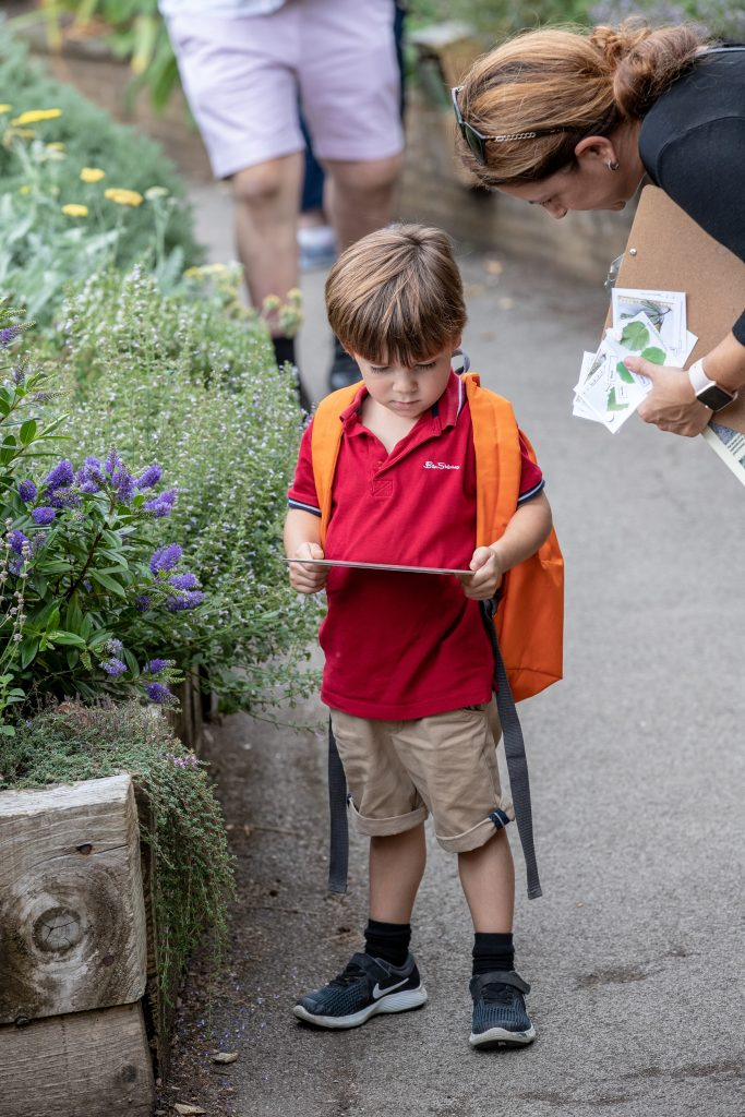 A young person reading about the Scented Garden.