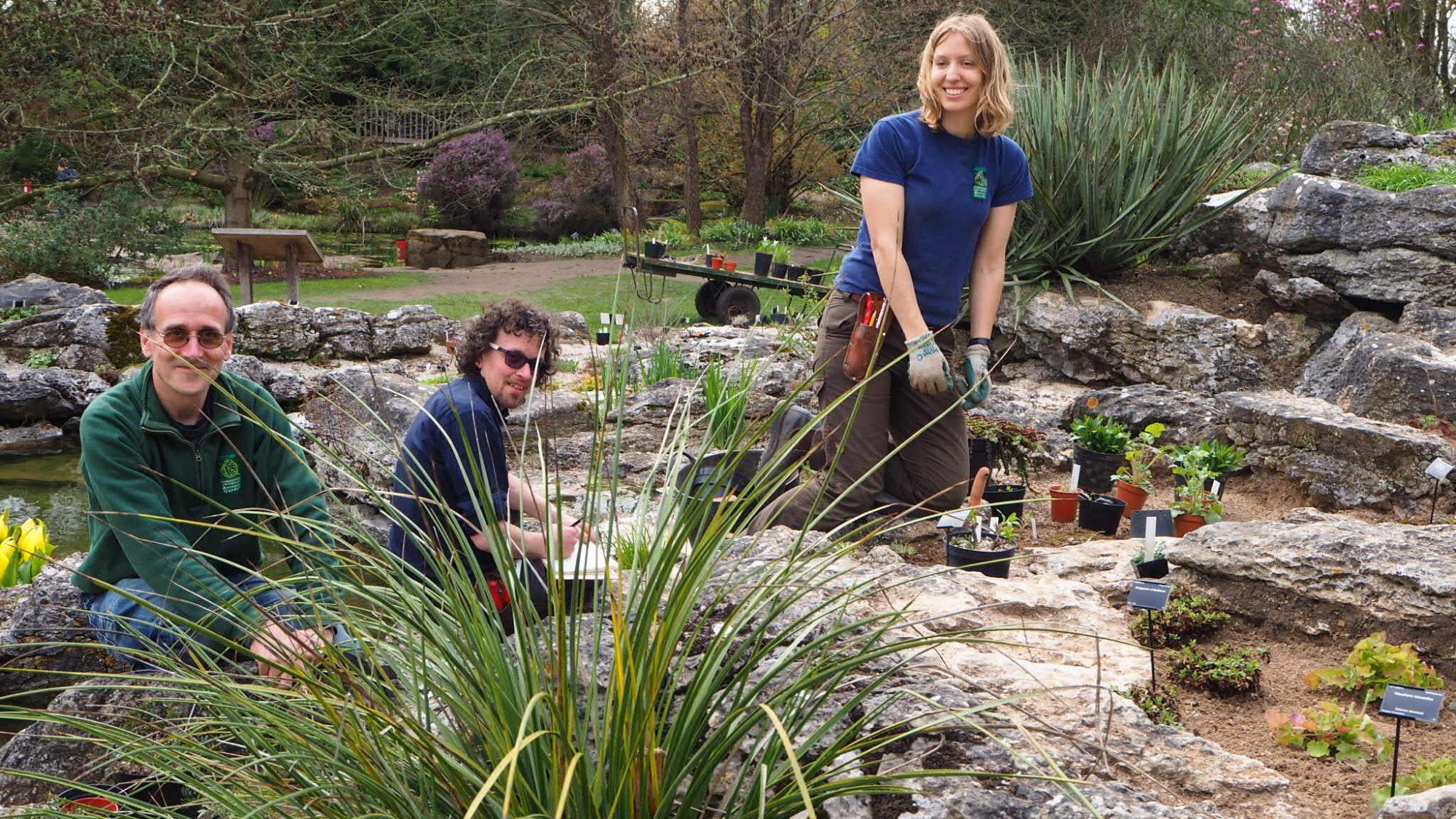 Horticulturalists planting up the Rock garden.