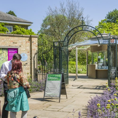 CUBG reopening in June 2020