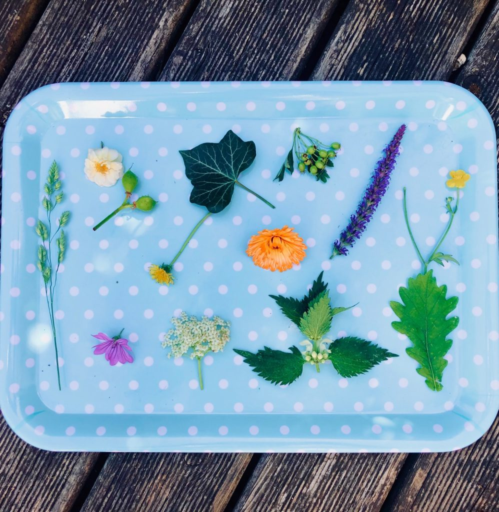 Image of flowers, leaves and grasses on a blue tray