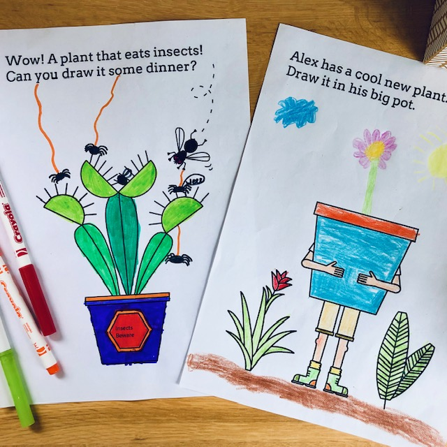Image of two botanic garden colouring sheets