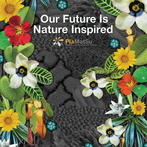 Our Future is Nature Inspired: PlaMatSu Exhibition