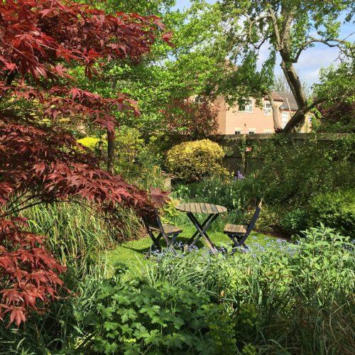ONLINE COURSE Small garden design in three half days: 14, 21, 28 November