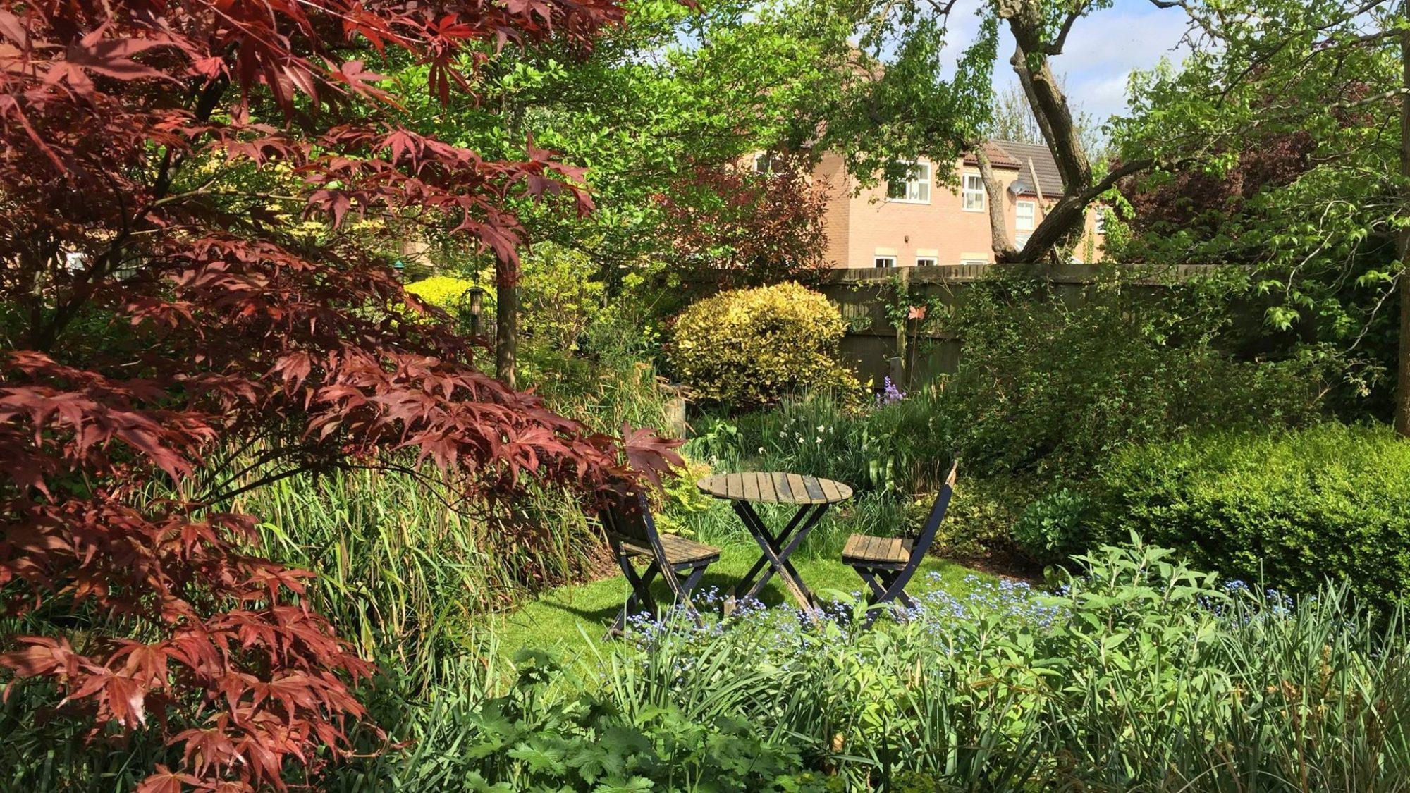 A well designed small garden