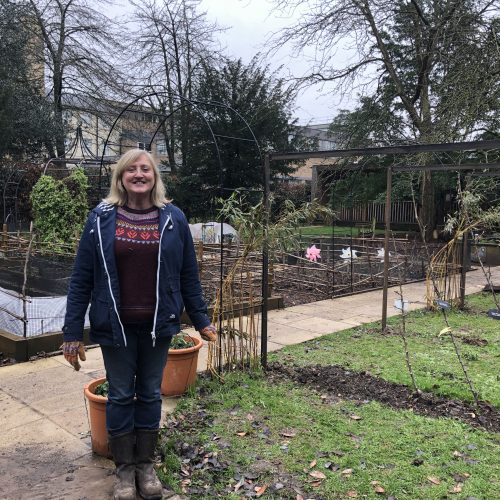 Facebook Ask the Gardener – lunchtime live