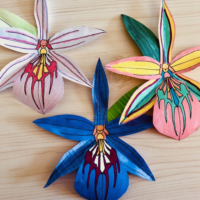 Image of colourful orchid flowers made out of paper