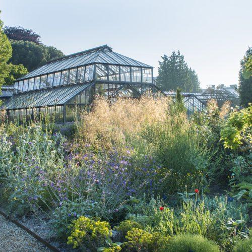 'Capture the spirit and beauty of Cambridge University Botanic Garden' photography competition