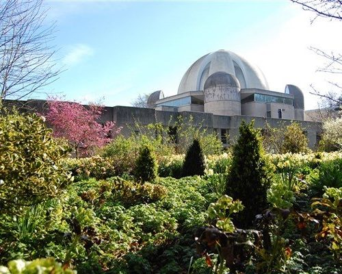FULLY BOOKED - Murray Edwards College Garden Tour
