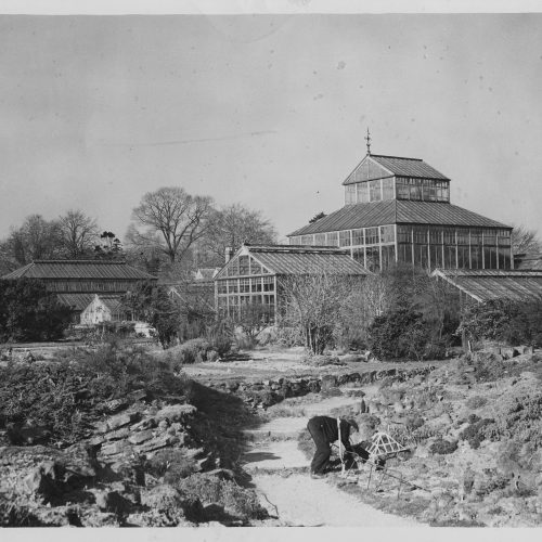 CUBG celebrates 175 years this summer!