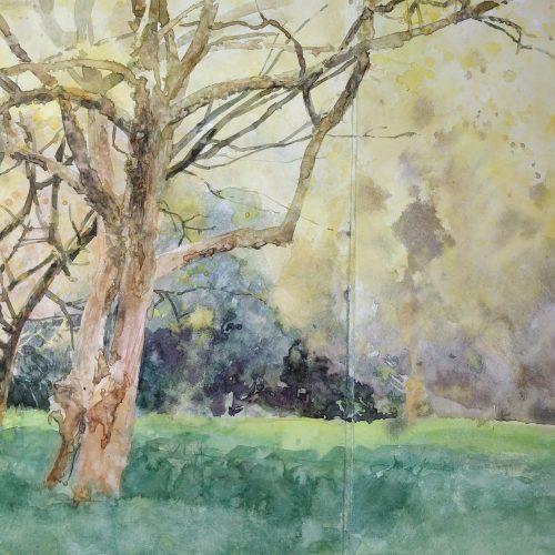 ONLINE COURSE Developing watercolour technique: further painting the garden landscape