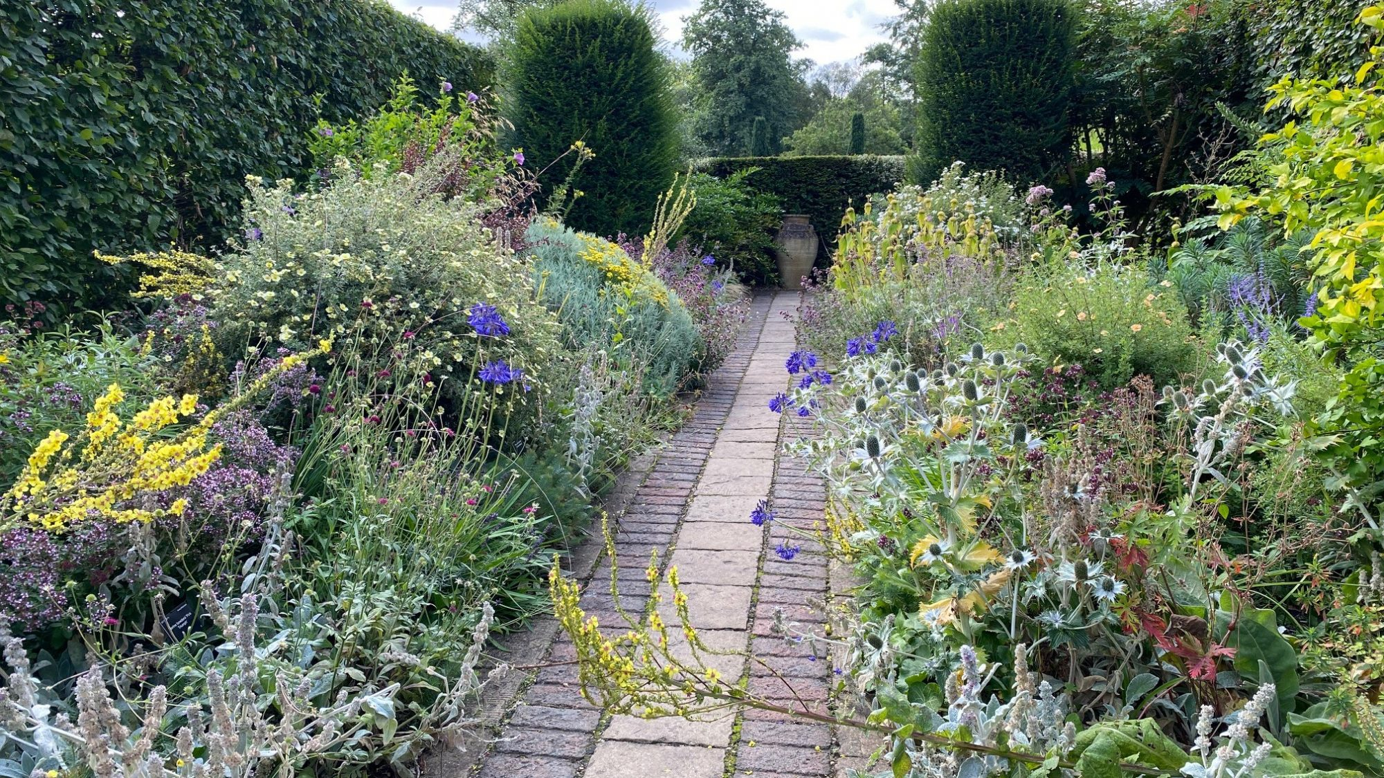 view of the Dry Garden