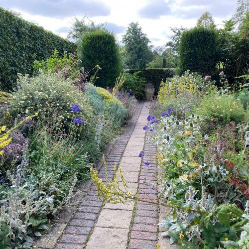 Cambridge Water sponsors the Dry Garden