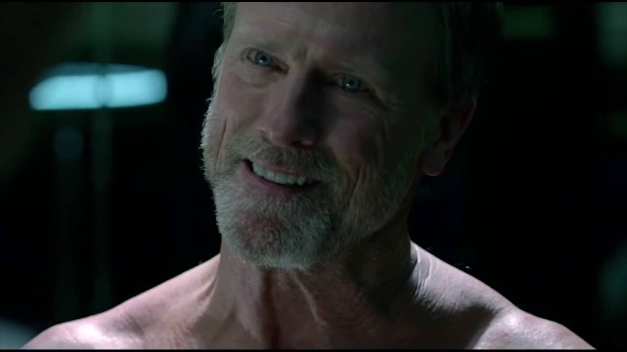 Louis Herthum as Peter Abernathy AKA The Professor