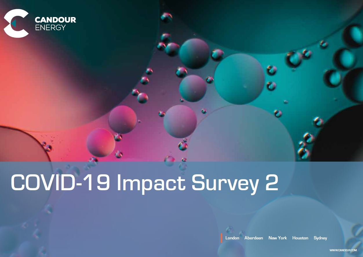 COVID-19 Impact Survey Results 2