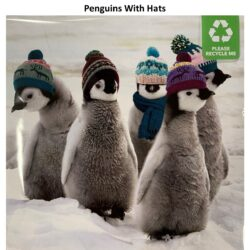 Penguins With Hats