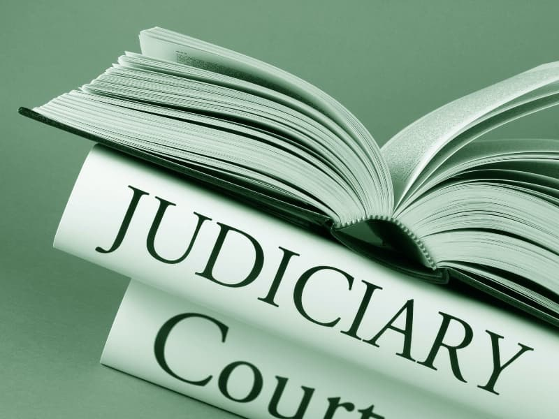 Judicial review written on spine of book
