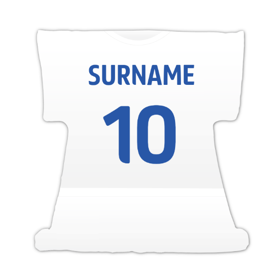 Sheffield Wednesday FC Kit Cushion