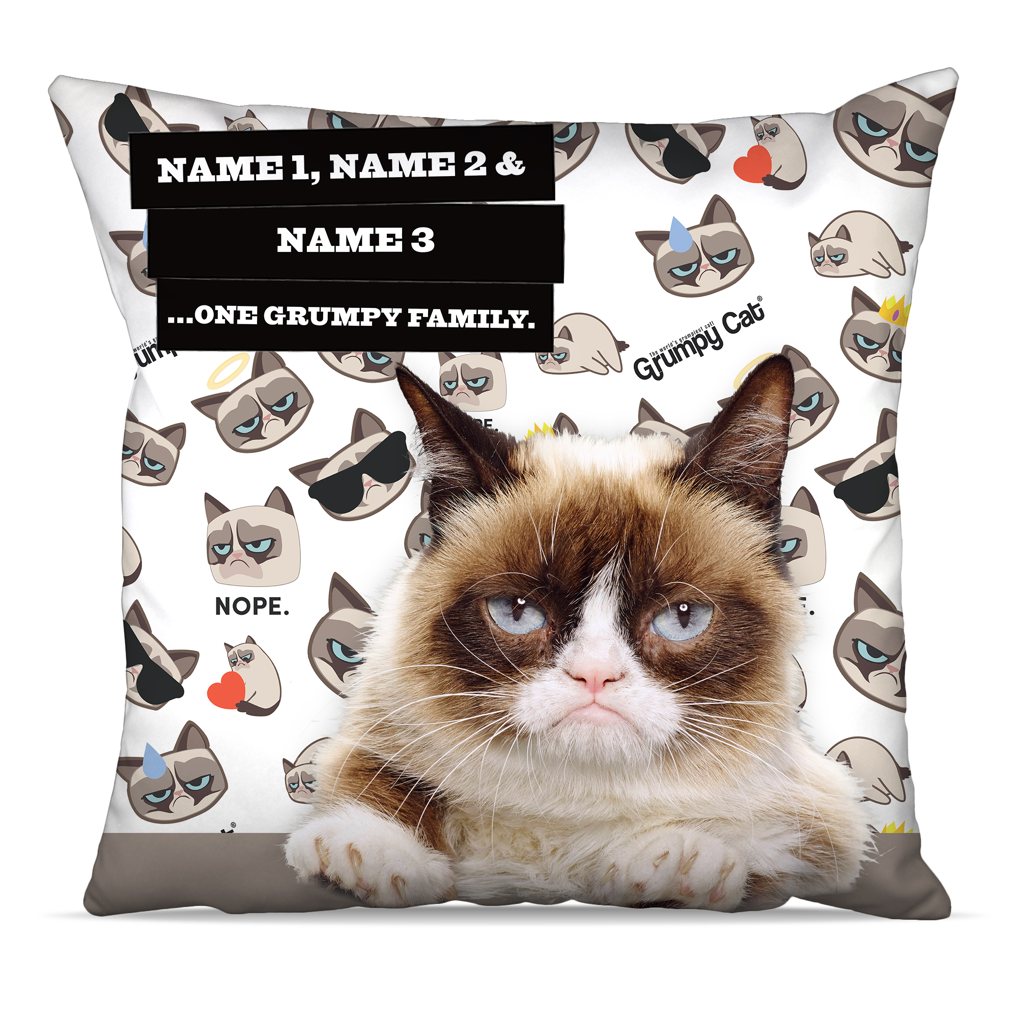 Grumpy Cat - Grumpy Family Emoji Cushion