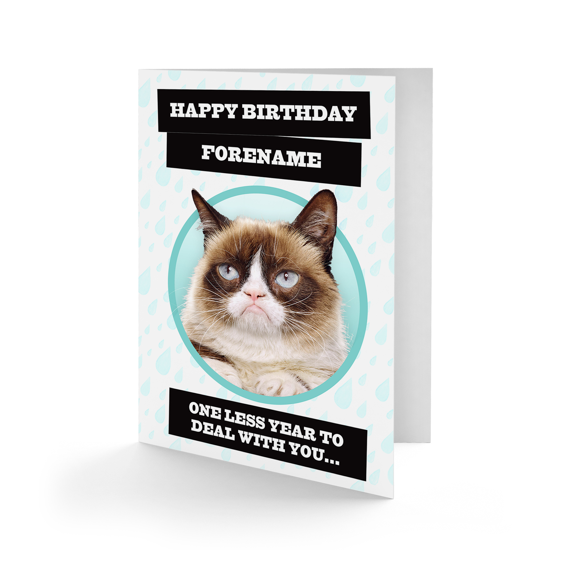 Grumpy Cat - One Less Raindrop Birthday Card