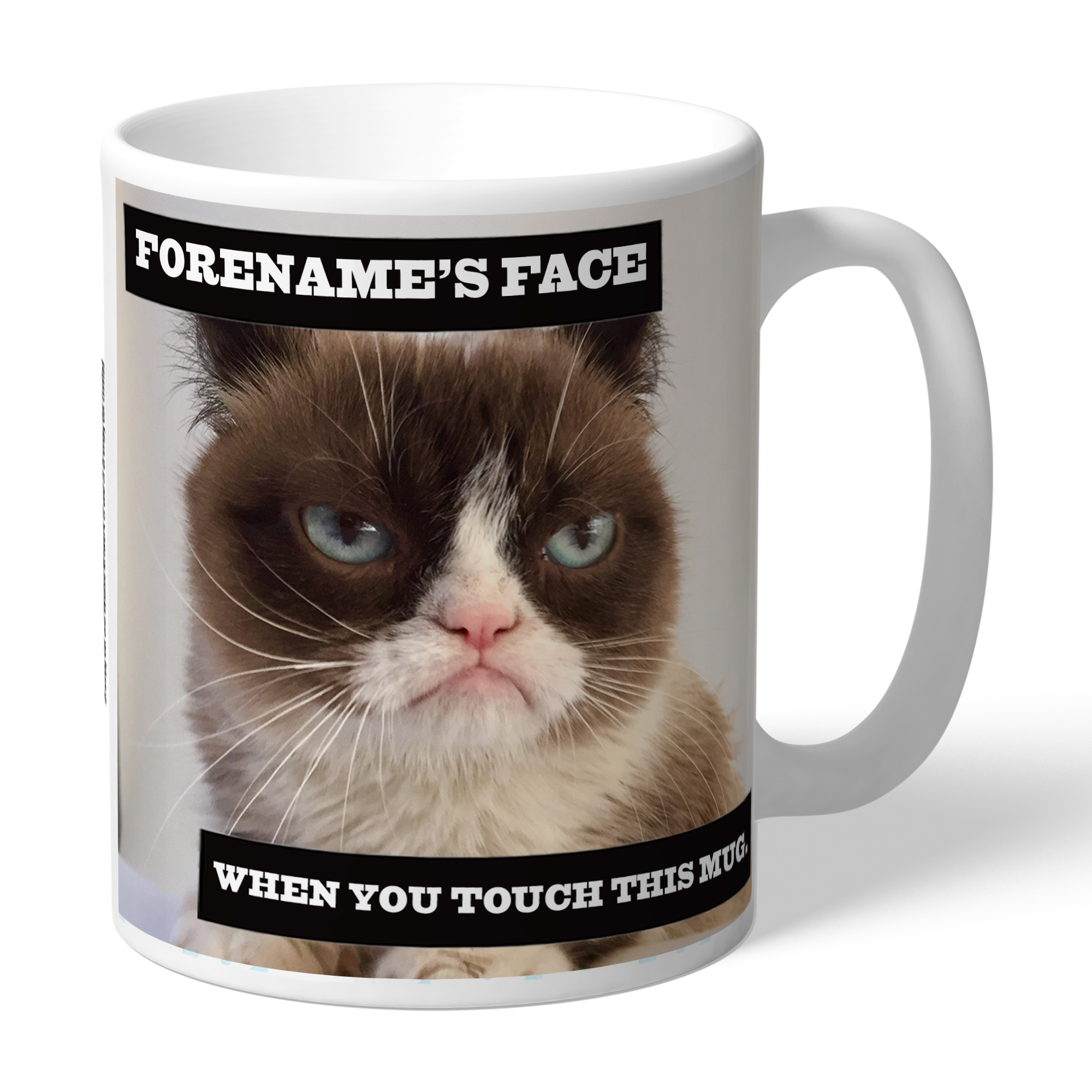 Grumpy Cat - When You Touch This Mug Mug
