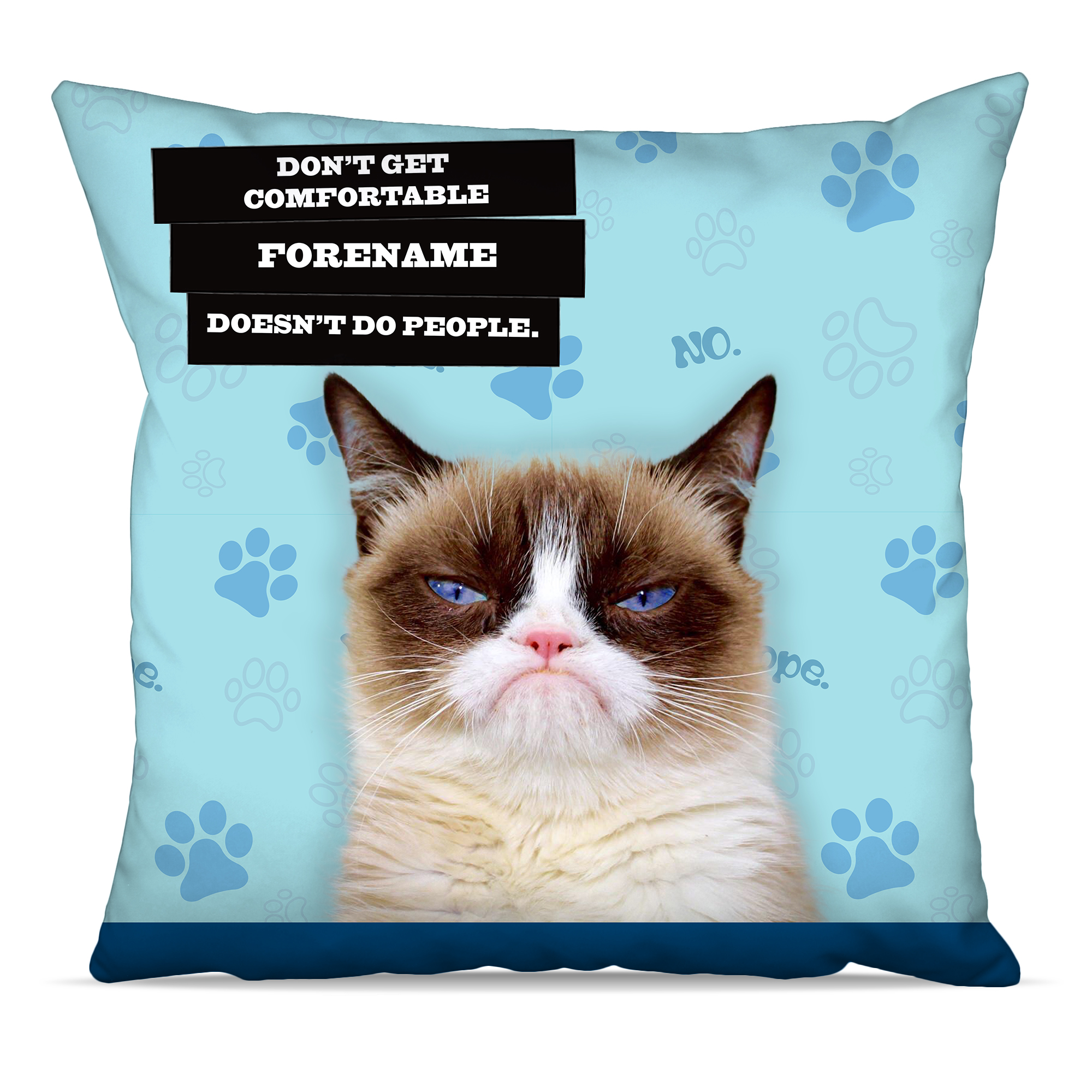 Grumpy Cat - Doesn���t Do People Blue Cushion