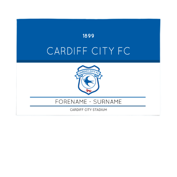 Cardiff City FC Minimal Ticket 6ft x 4ft Banner