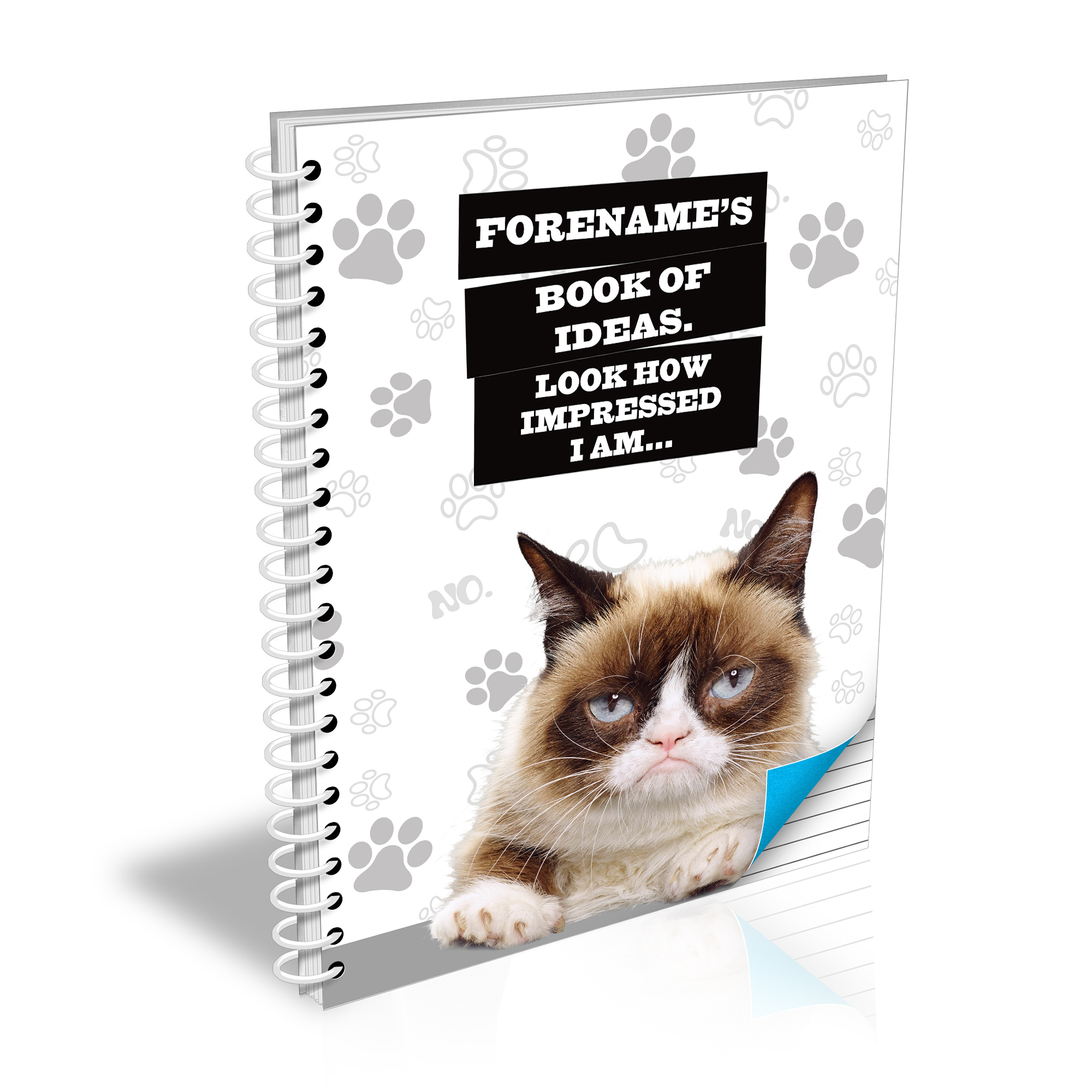 Grumpy Cat - Book Of Ideas Grey A5 Lined Notebook