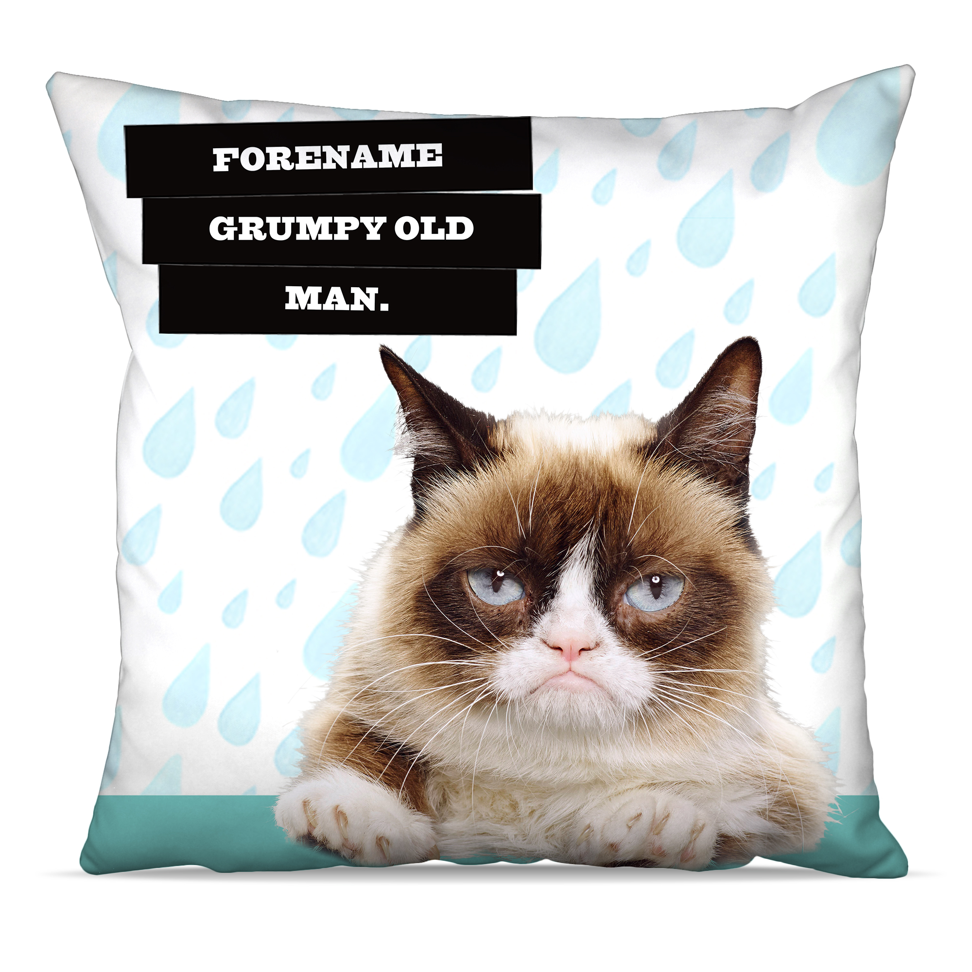 Grumpy Cat - Old Man Raindrop Cushion