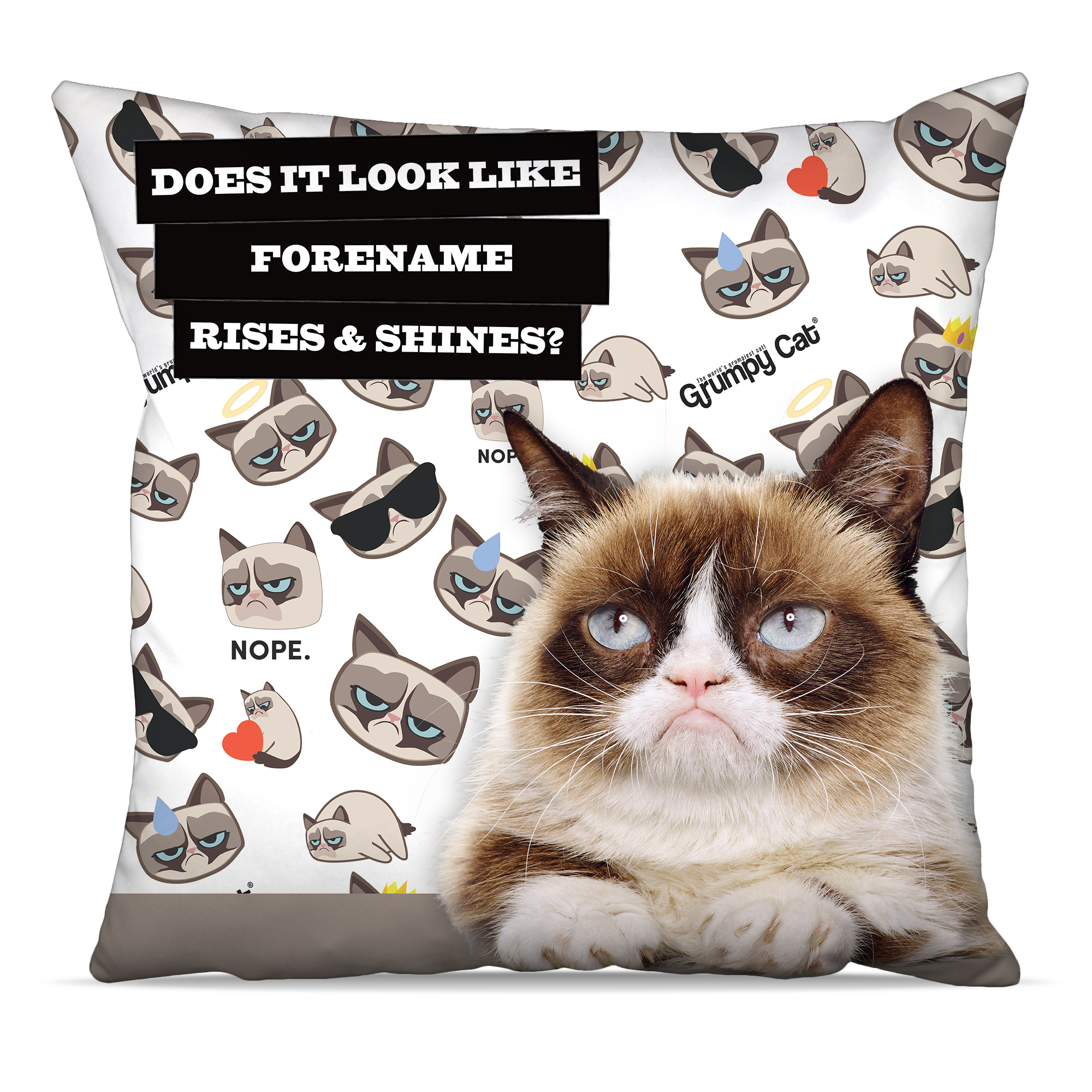 Grumpy Cat - Rise and Shine Cushion