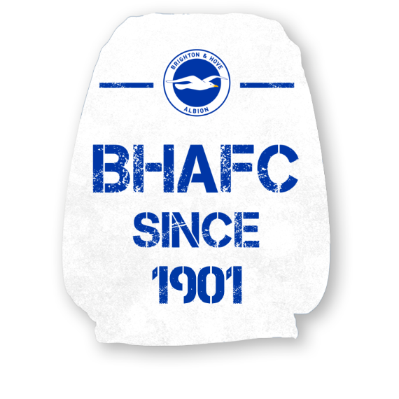 Brighton & Hove Albion FC Paint Splash Headrest Cover