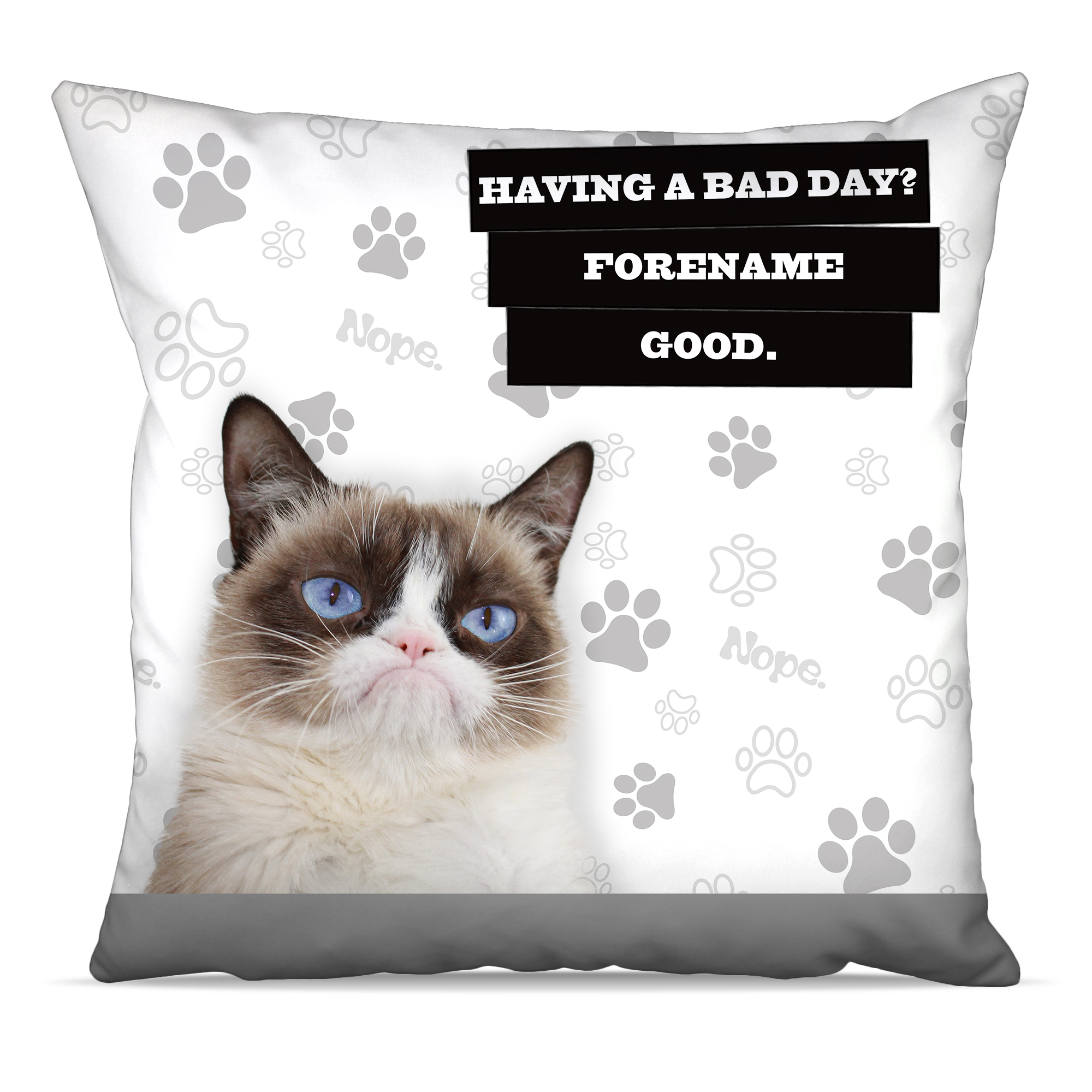 Grumpy Cat - Bad Day Grey Cushion