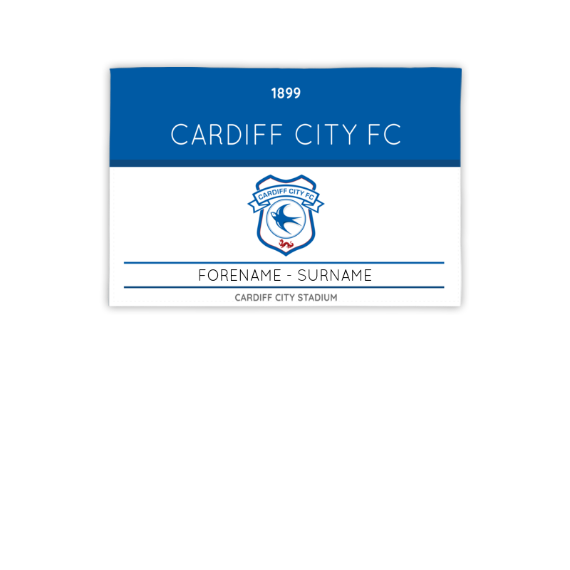 Cardiff City FC Minimal Ticket 3ft x 2ft Banner