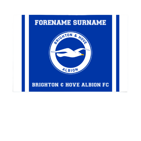 Brighton & Hove Albion FC Crest 6ft x 4ft Banner