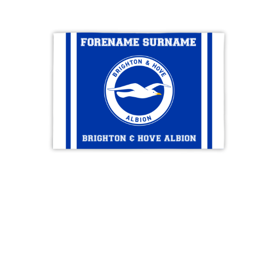 Brighton & Hove Albion FC Crest 3ft x 2ft Banner