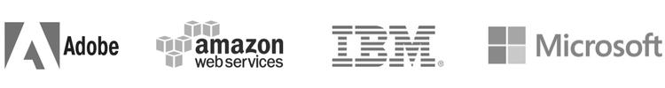 SAP technology partners