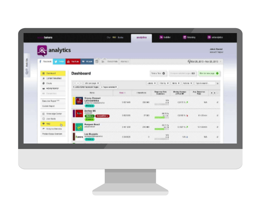 Socialbakers dashboard