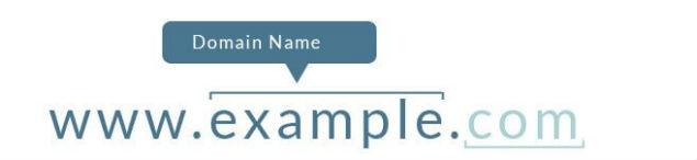 GoDaddy Domain Name Search